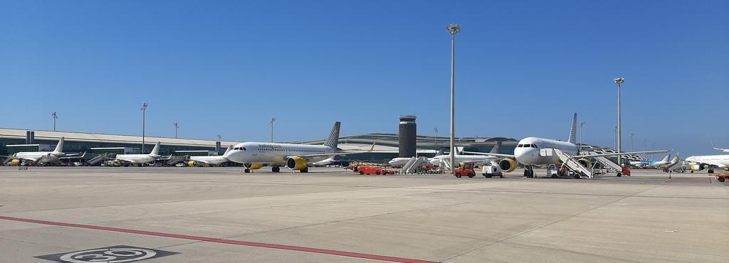 IATA y sus previsiones sobre el futuro del sector aéreo